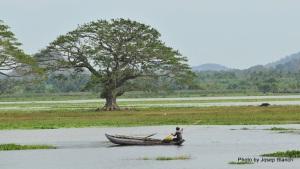 Sri_Lanka-342