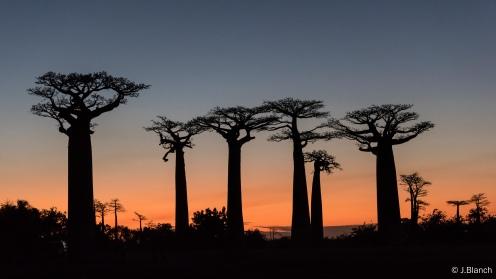 Madagascar-083